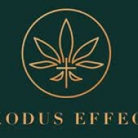 exoduseffectsus